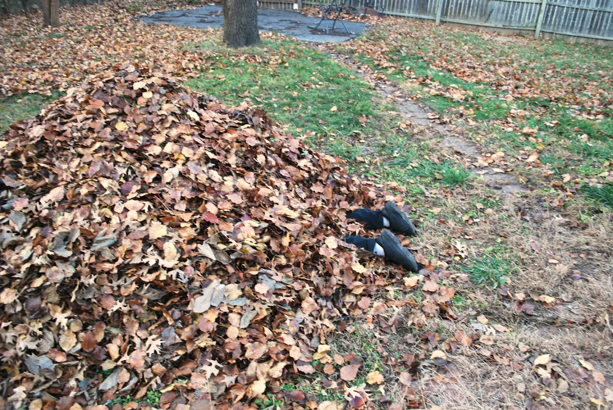leaf pile with legs sticking out