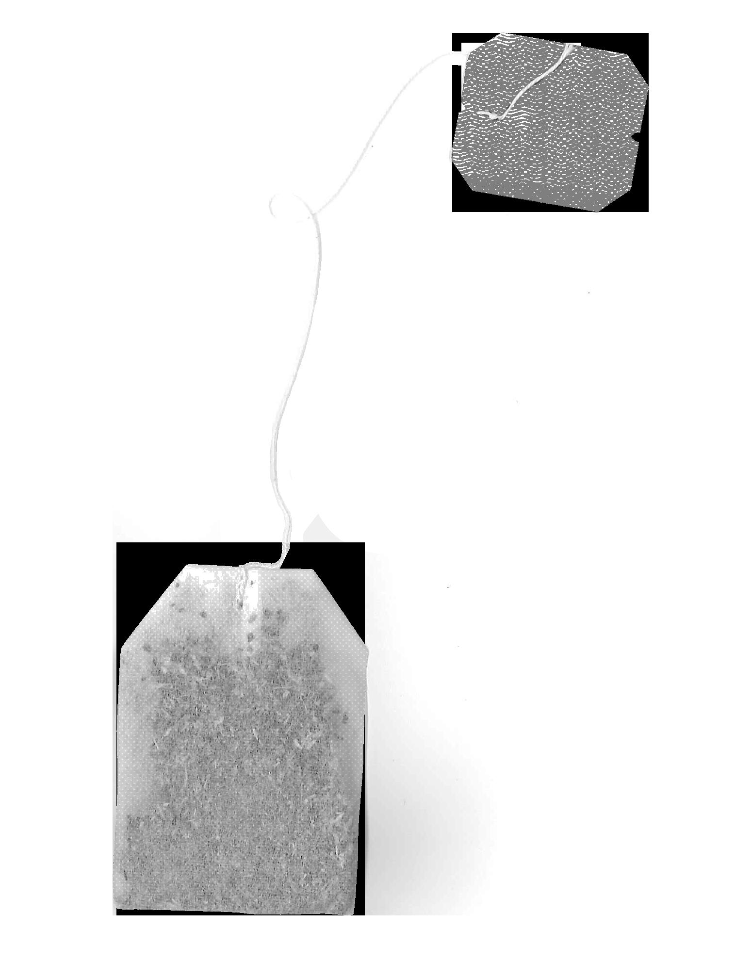 image of a tea bag